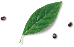 hochzeitsarrangement_leaf